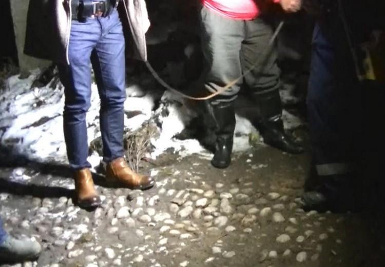 Putnoki emésztőben végezte a meggyilkolt férfi