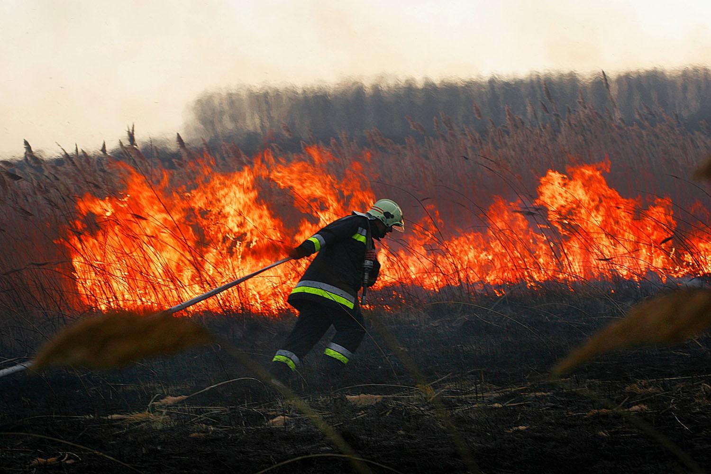 Házakat veszélyeztetett a tűz a megyében