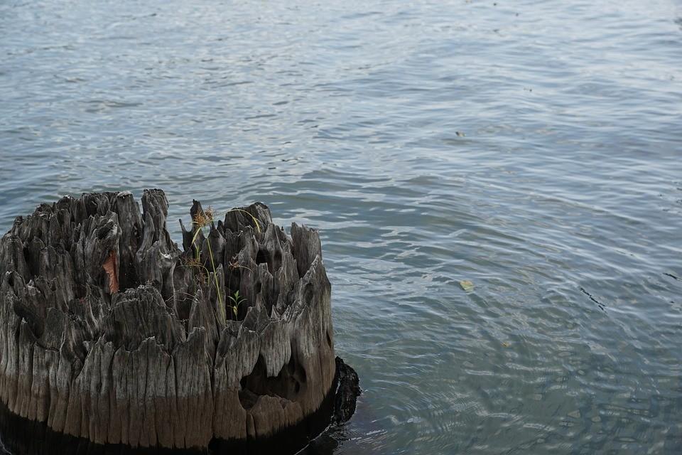 Dráma: egyetlen napon három halott vizeinkben