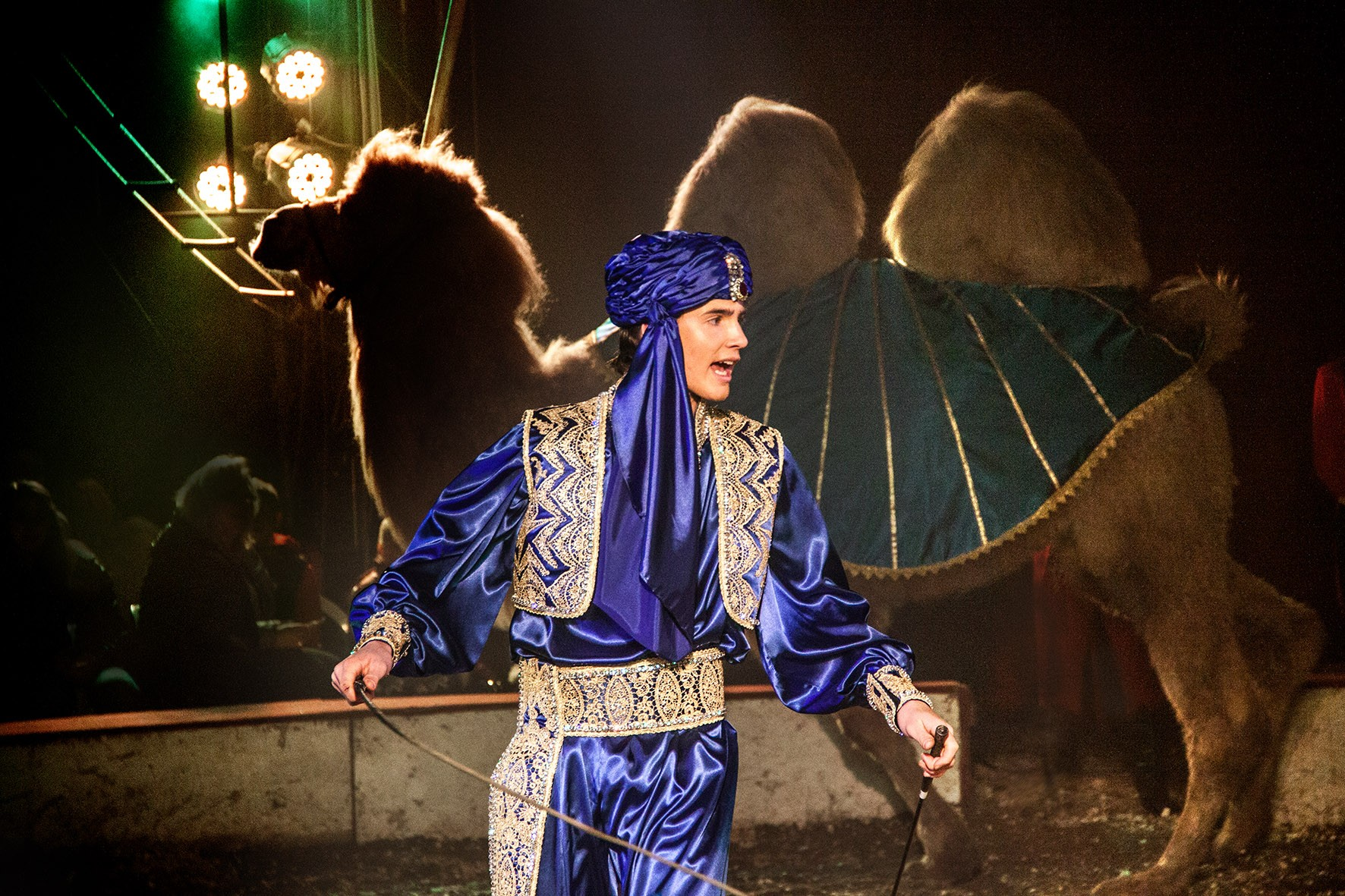 Állati extrém cirkusz jön Debrecenbe!