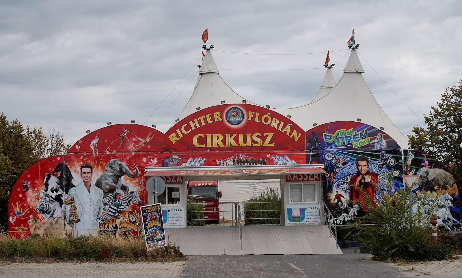 Cirkusz Debrecenben: vásároljon jegyet olcsóbban!