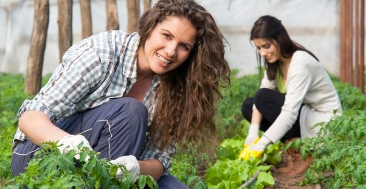 A vidéki nők nélkül éhen halnánk