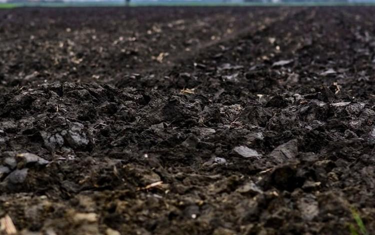 Termőföldár: brutális drágulás Hajdú-Biharban
