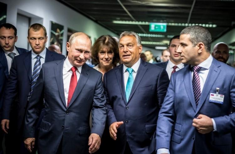 A Debreceni Egyetem leendő díszdoktora utcahosszal nyeri az orosz elnökválasztást