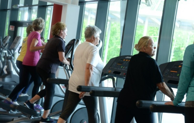 A Debreceni Egyetemen rájöhettek az öregedés lassításának titkára