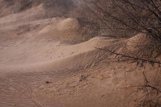 Ilyet még nem látott! Sivatagi hangulat Nyíregyháza határában