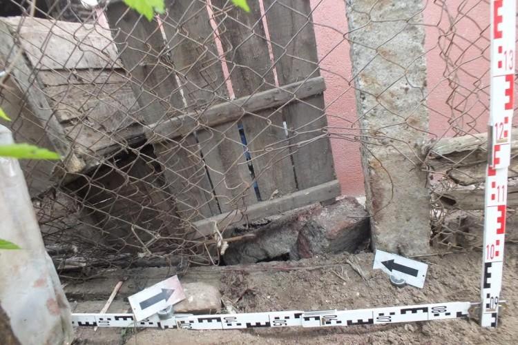 Halálos kutyatámadás Szabolcsban