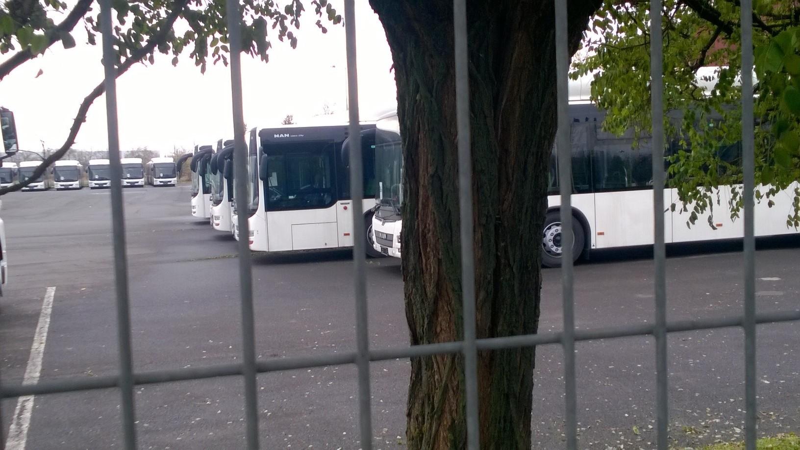 Lövei szerint eltolták Nyíregyházán a buszprojektet