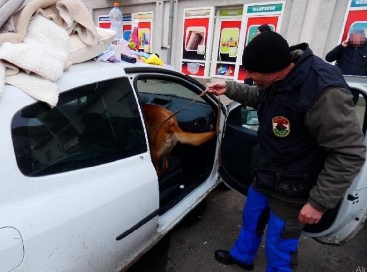 Francia kokainistát fogtak Kisvárdán