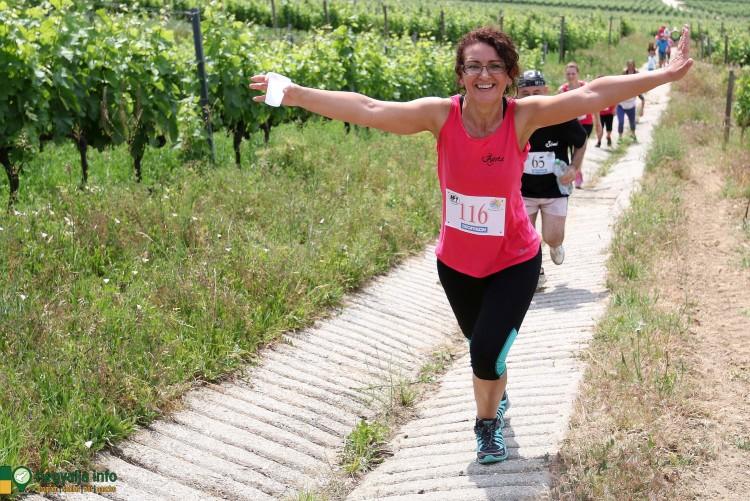 HegyreFel! Extrém futóverseny lesz Tokajban