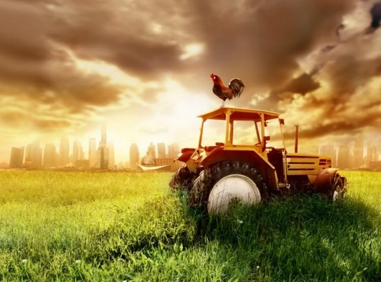 Ó, azok a nem létező, borsodi traktorok!