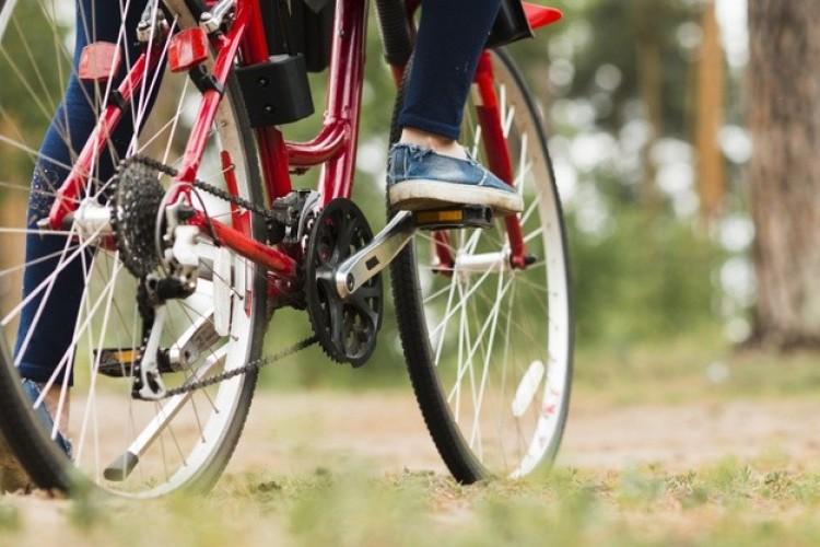Most igazán megéri biciklivel menni a miskolci állatkertbe!