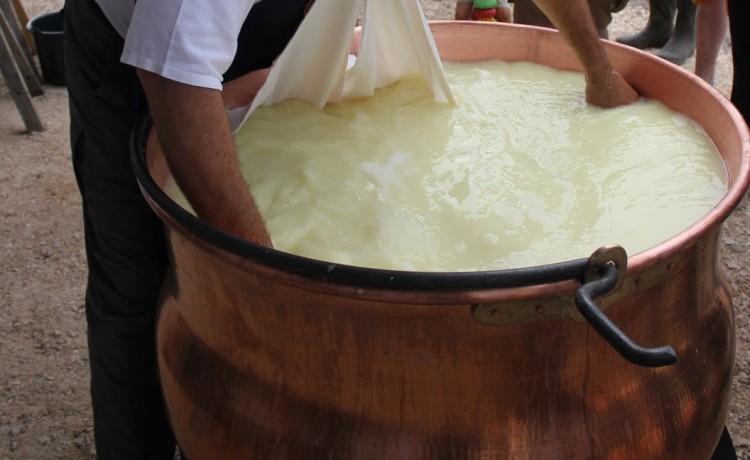 Bodrogkeresztúron elkészítik az ország legnagyobb sajtját