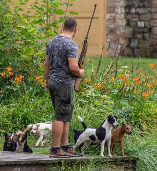 Debrecen mellől hívtak segítséget a vízipatkányok ellen