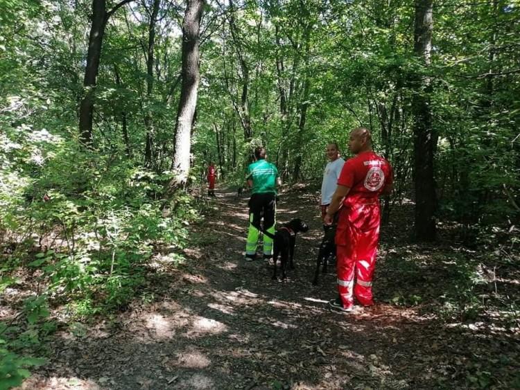 Kutyás mentőcsoportok keresik a Görömbölyről eltűnt nőt