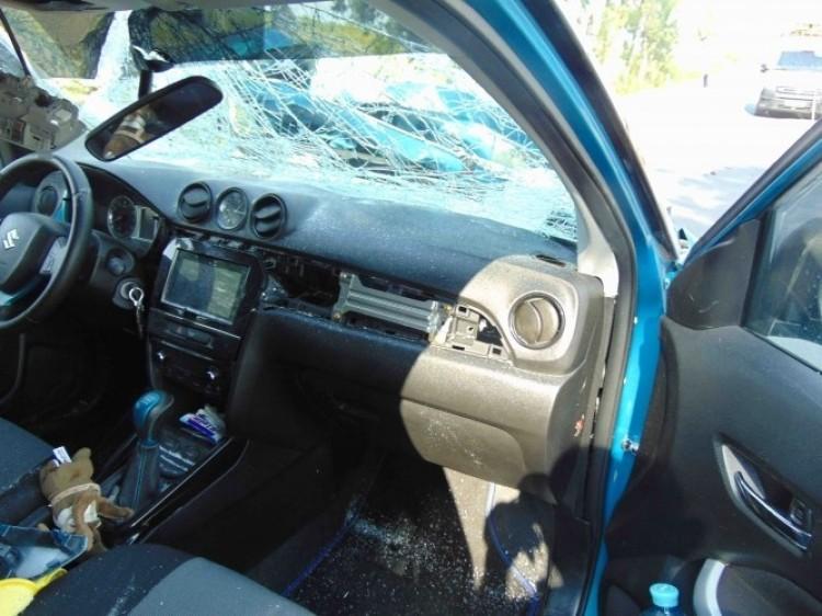 Szarvasok ugrottak autók elé Borsod megyében