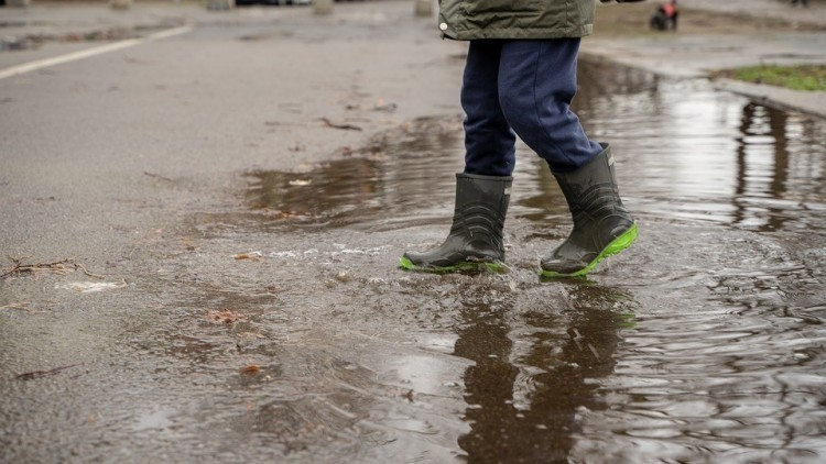 A csapadékvíz nem okoz többé gondot Kesznyétenben