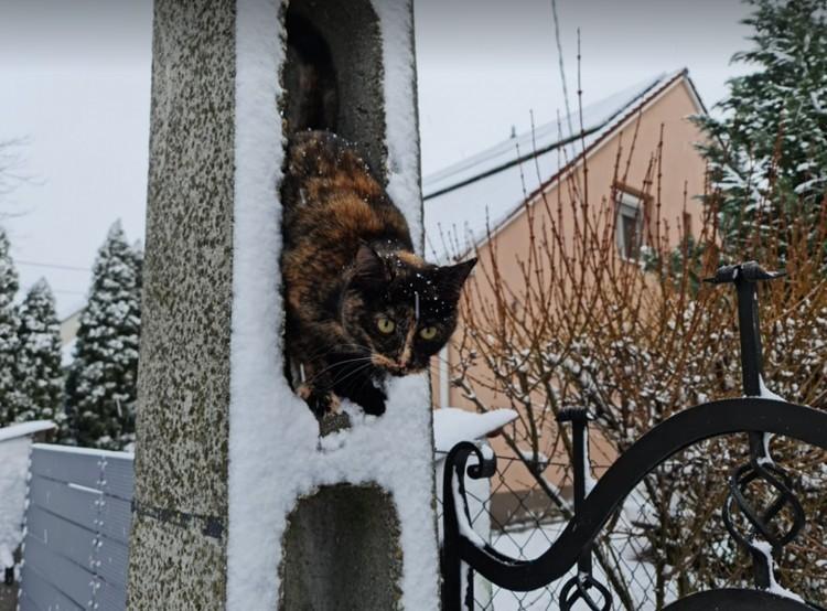 Miskolcon szerte a városbantakarítják az idei első havat