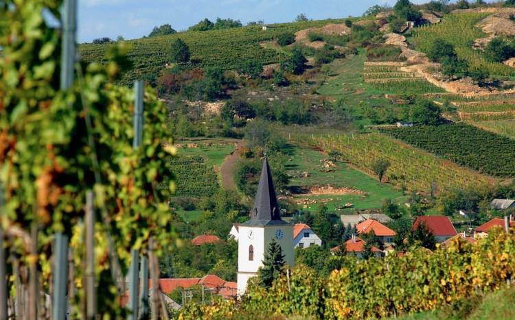 Óriási összegből fejlesztenek a Tokaj-Zemplén térségben