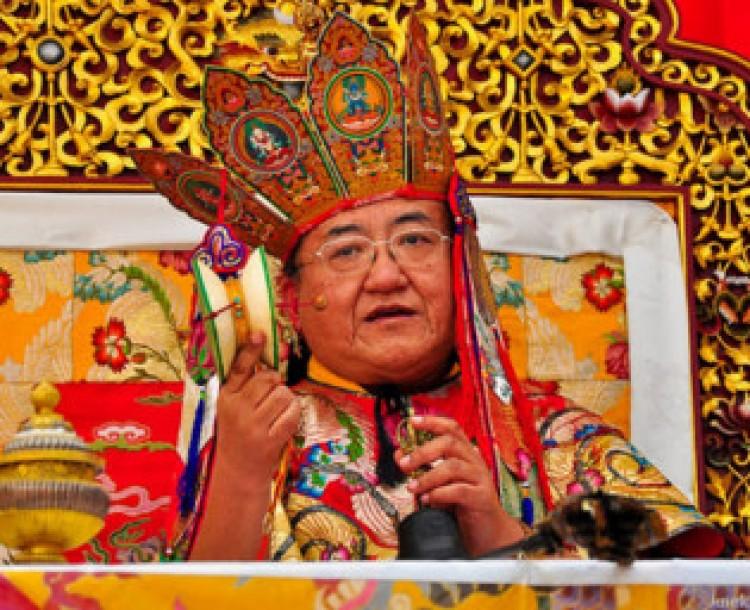 Dalai lárma