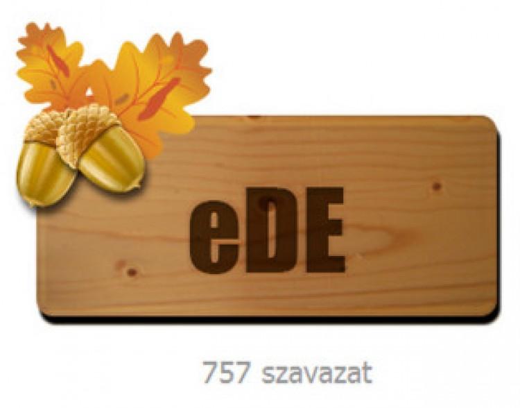eDE, Debrecen kedves gyereke megnyerte!