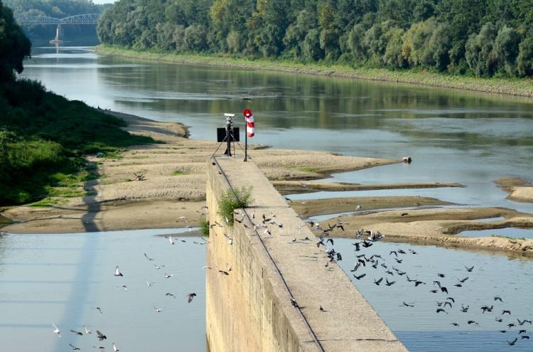 Nagy a baj a Tiszával: át lehet rajta sétálni