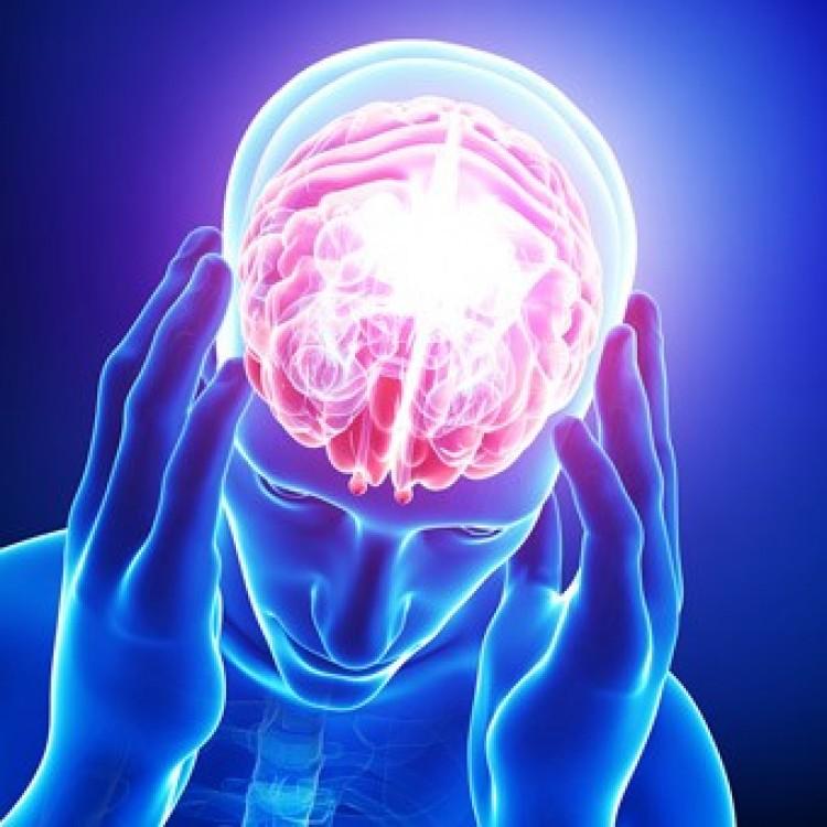 Szerdán mindent megtudhat az agyáról