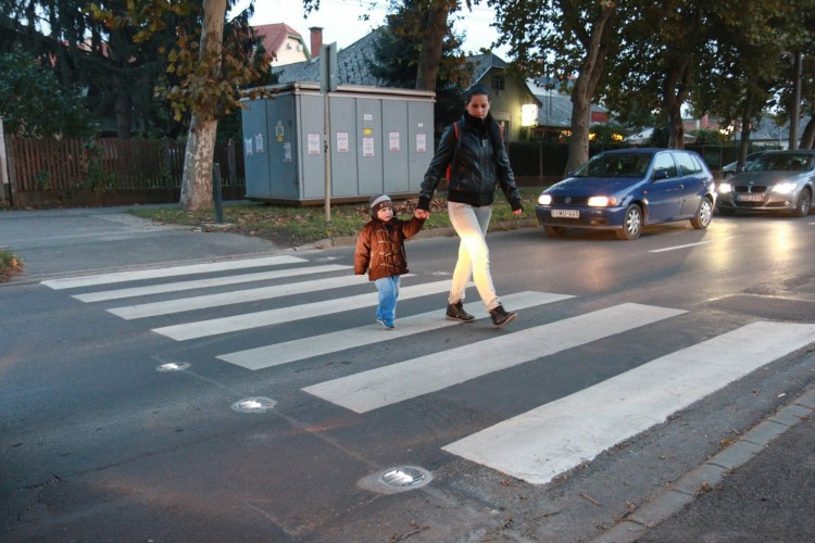 Csodazebrát kapott Debrecen
