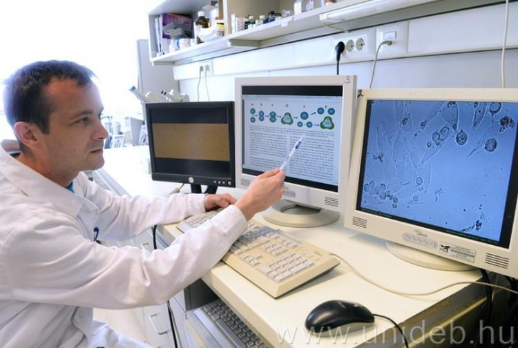 Debreceniek dobtak nagyot a sejtkutatásban