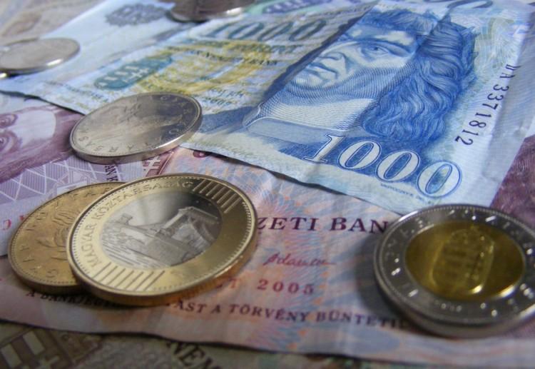 Aki vállalja a magyart, pénzt kap