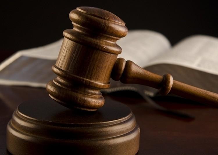 Kétmilliárdos csalás: rendőrök vezették el az ebesi álbrókert