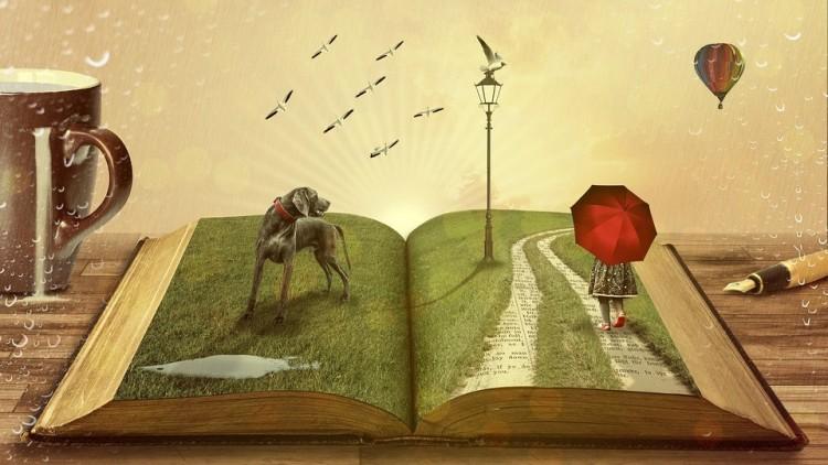 Azért kell könyvet olvasni, hogy ne maradj hülye!