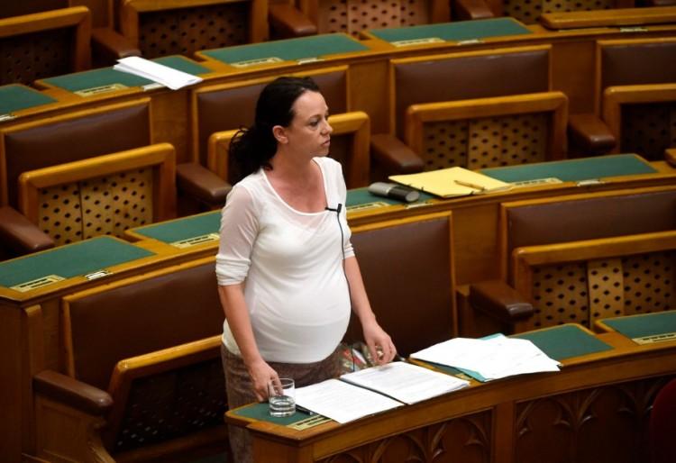 A magyar ellenzék nekiment a Soros-ösztöndíjasoknak