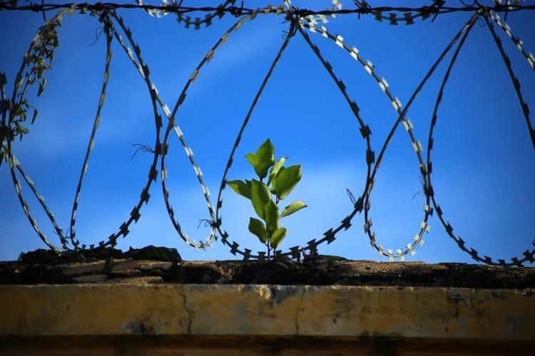 Elfogták Cegléden a szökött elítéltet +fotók