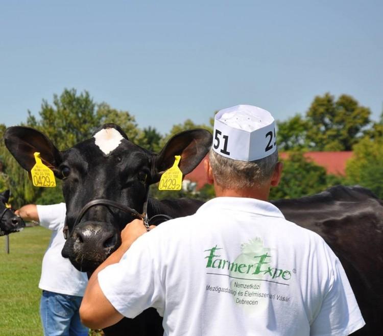 Hatalmas érdeklődés a debreceni Farmer Expo iránt