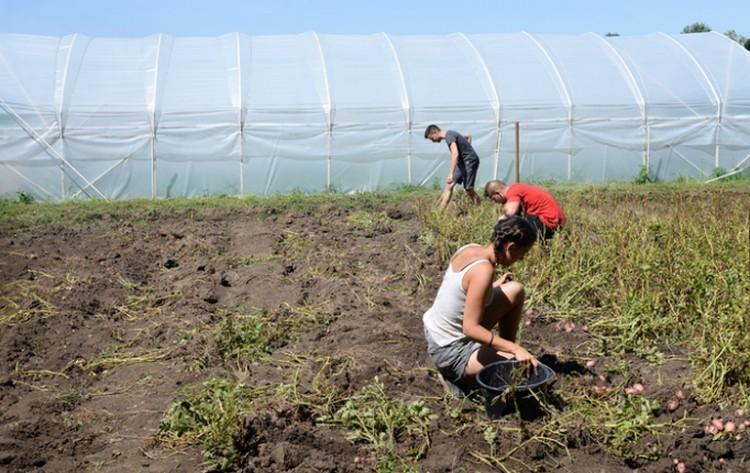 Klímaváltozás: riasztó értékeket mértek a debreceni kutatók