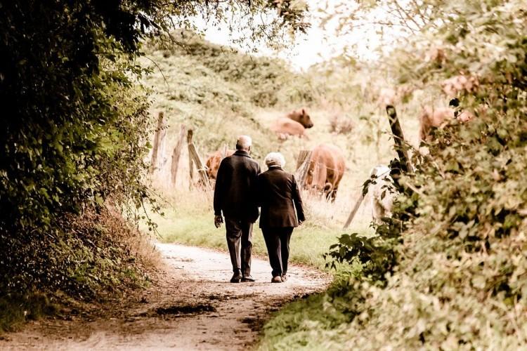A nyugdíj mértékének kiszámítása igencsak egyszerű