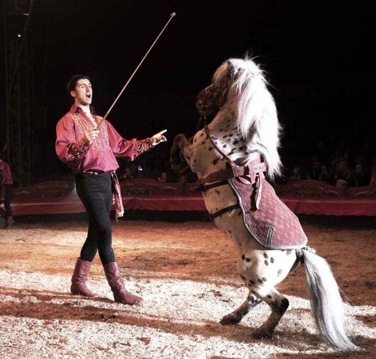 A héten még Debrecenben a Magyar Nemzeti Cirkusz mesés világa