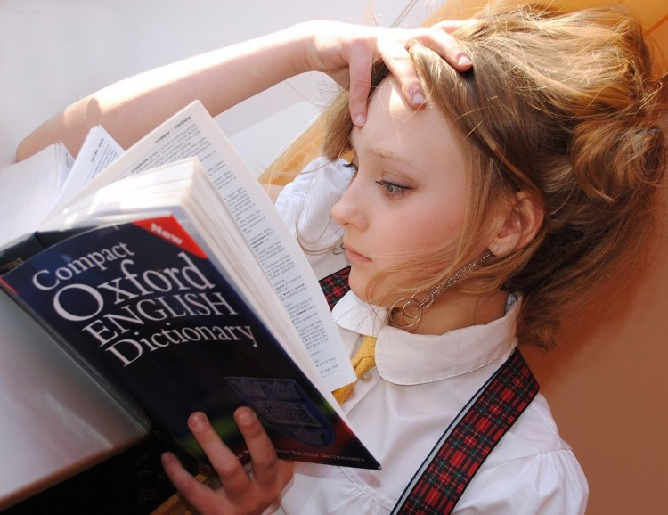 Ősszel jön a nyelvi diákhitel