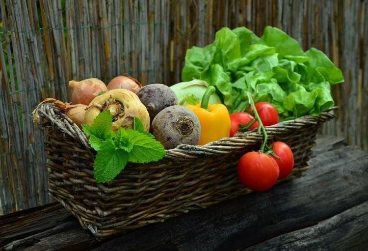 Öt százalékra mérsékelték a bioélelmiszerek áfáját