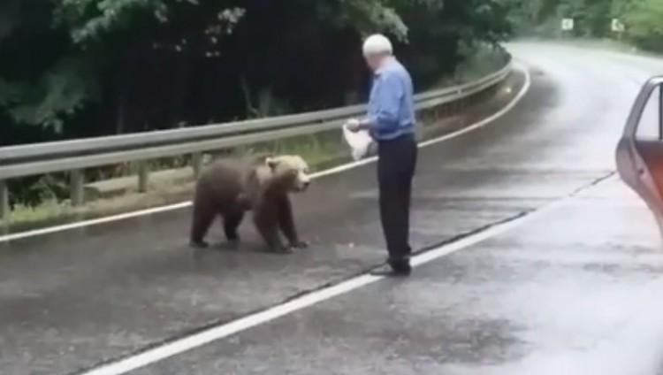 Az öreg székely és a medve az út közepén + VIDEÓ!