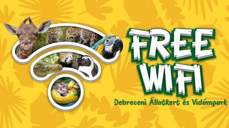Az országban elsőként a Debreceni Állatkertben ingyenes a wifi