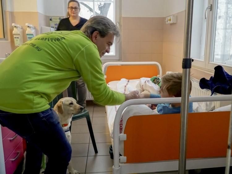 Labradorokkal érkezett a Mikulás a debreceni klinikára