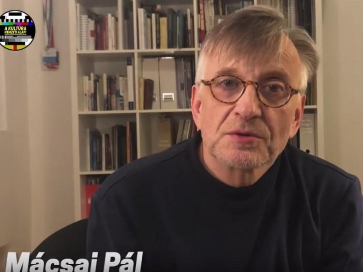 Mácsai Pálnál és egy sor elismert színésznél betelt a pohár – VIDEÓ