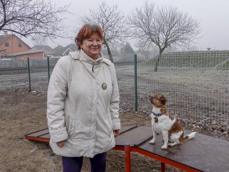 Elkészült Debrecen első kutyajátszótere