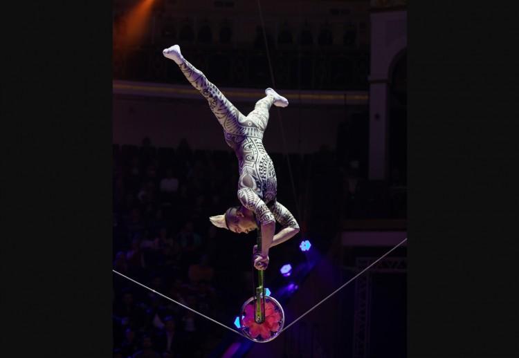 Minden idők leglátványosabb műsorával jön Miskolcra a cirkusz