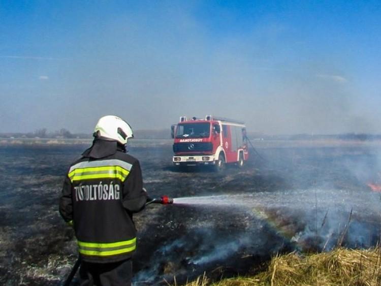 A motoros láncfűrész is előkerült Debrecen határában