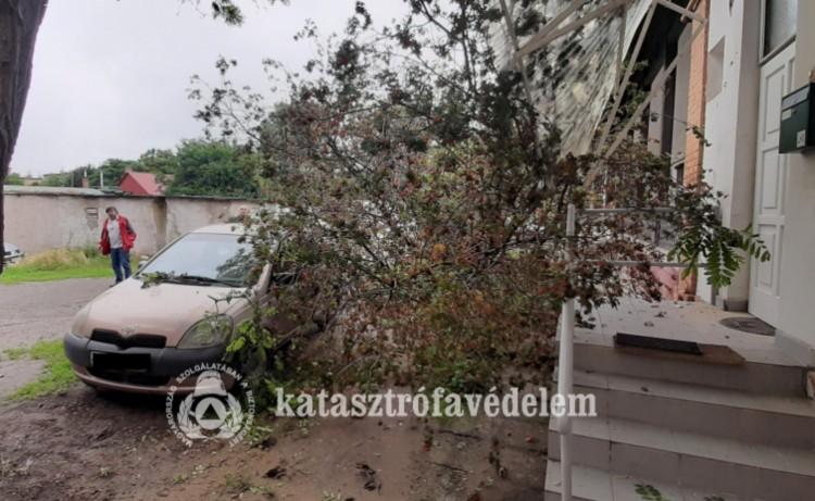 Rengeteg kárt okozott az éjjeli vihar Debrecenben és a megyében