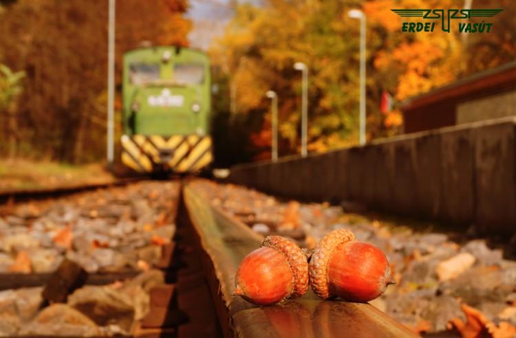 Őszi élményvonatozás Debrecenben