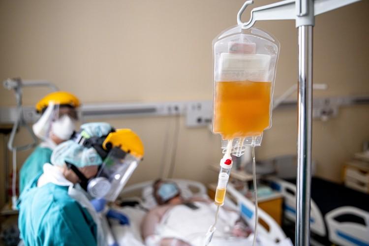 A főigazgató szerint nagyon hatásos a vérplazma-terápia